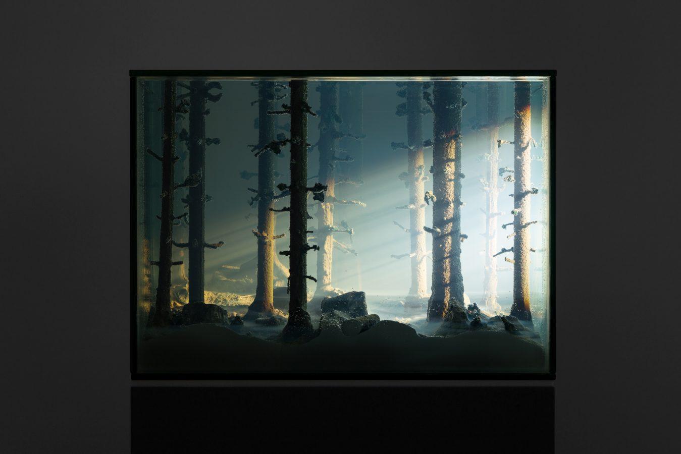 Galeria Pedro Cera – Mariele Neudecker - Echo Chamber