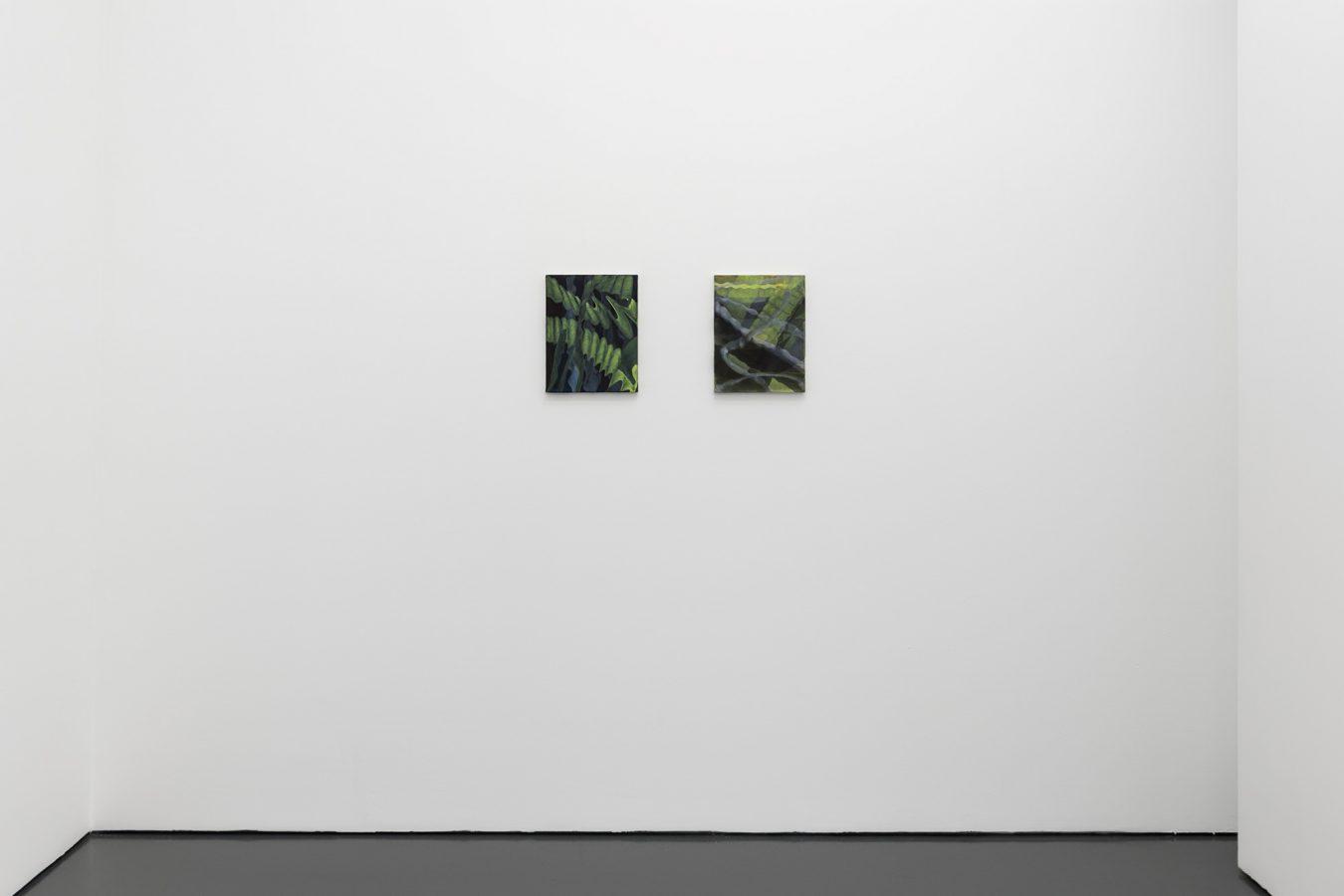 Galeria Pedro Cera – Ana Manso - Z