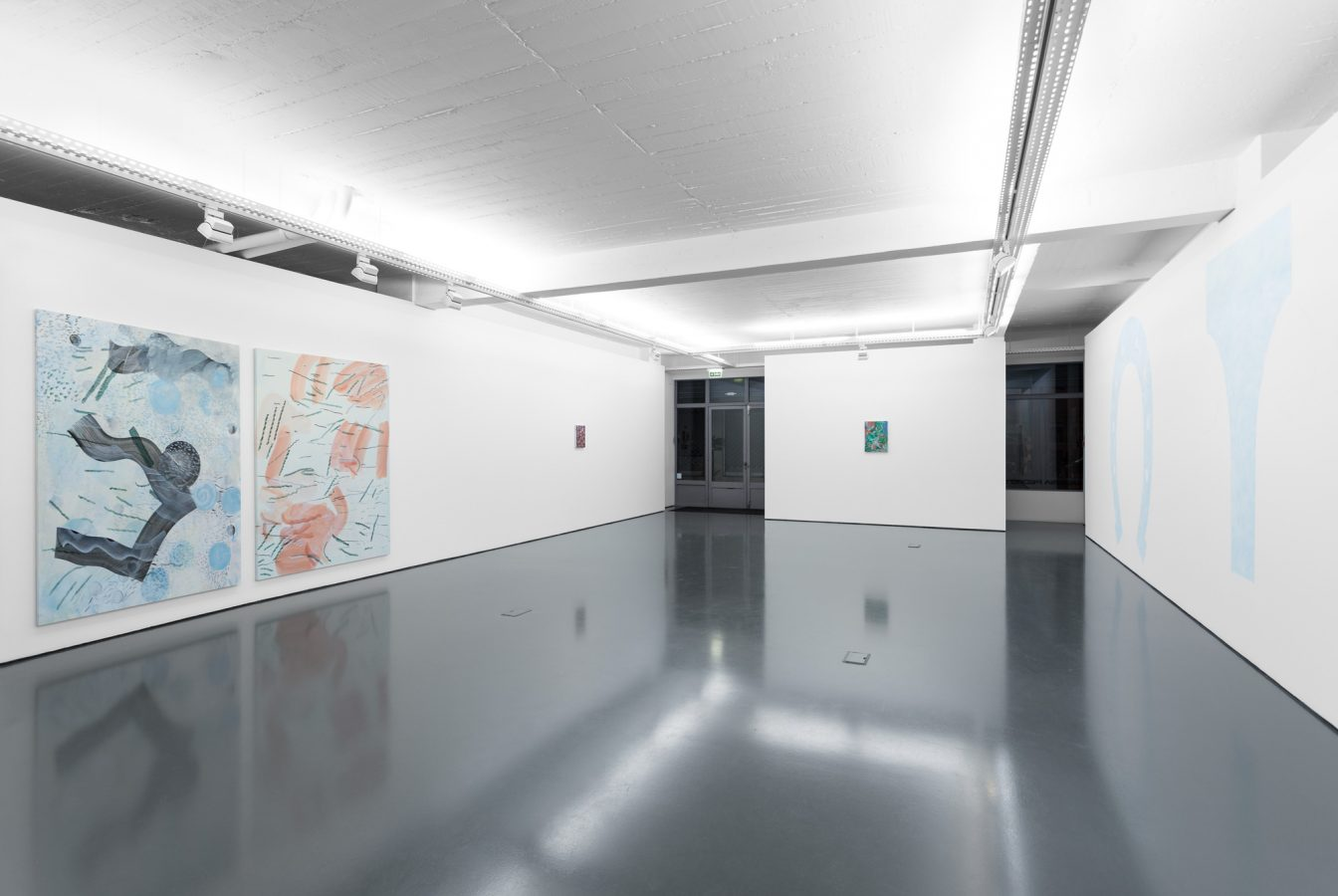 Galeria Pedro Cera – Ana Manso - In Order of Appearance