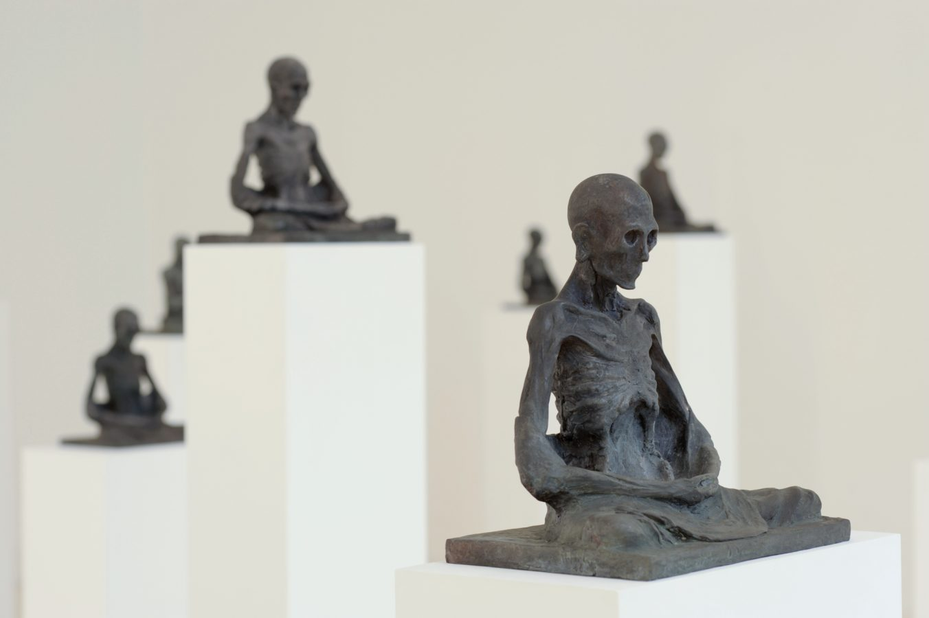 Galeria Pedro Cera – Miguel Branco -