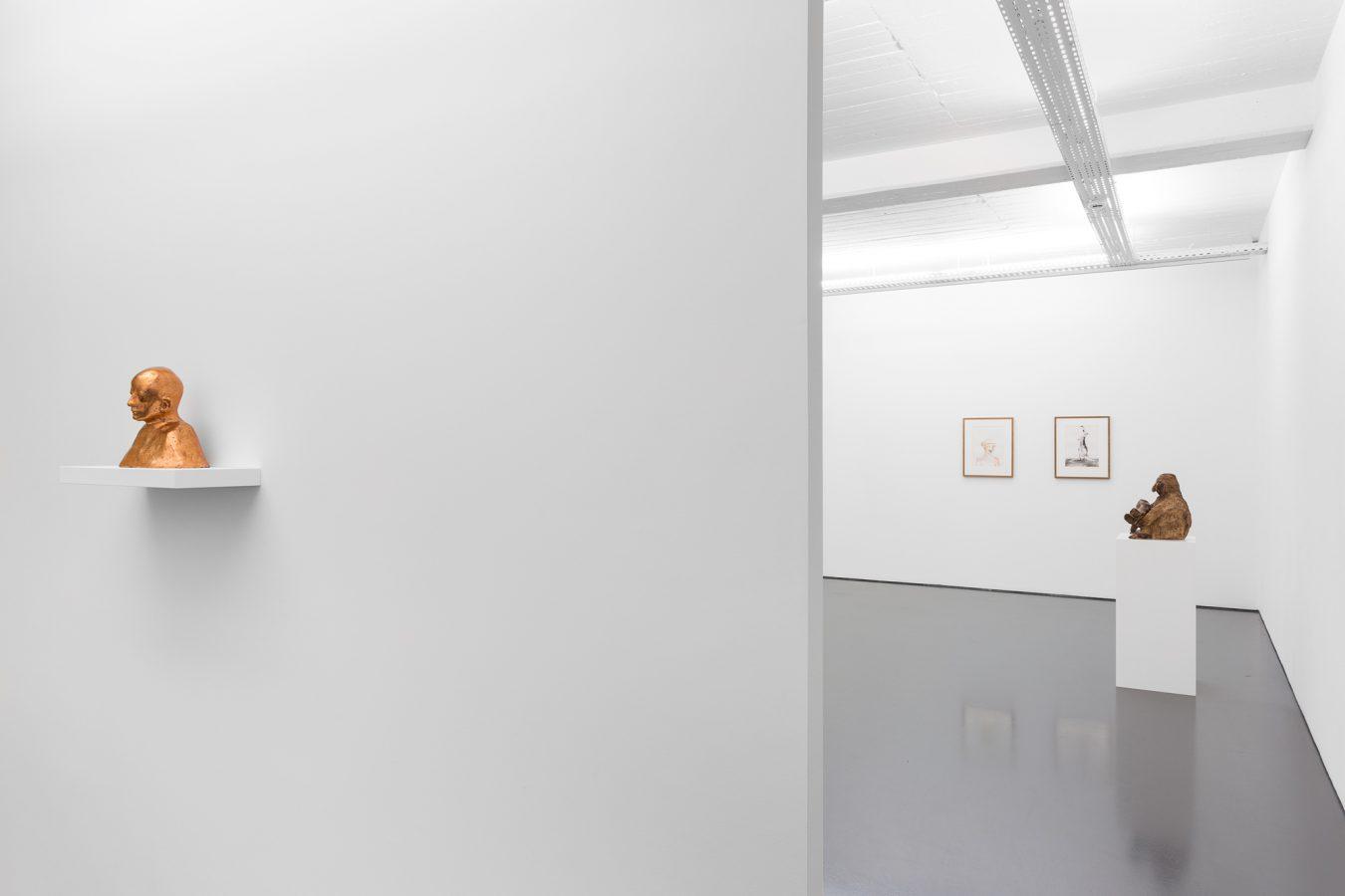 Galeria Pedro Cera –  - Paloma Varga Weisz